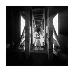 The Bridges of Berwick #1