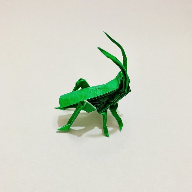 #origami #papiroflexia #paper #종이접기 #종이 #紙 #おリがみ #papercraft #paperart #papersculpture #papel #creacionesorigami #paperfolding #grillo #cricket #grilo #蛬 #蟋 #cricketinsect #크리켓 #insect #OrigamiInsect #insecto #insectodepapel #bug #origamibug