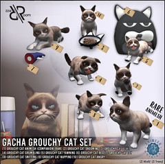 [Rezz Room] Pack Grouchy Cat