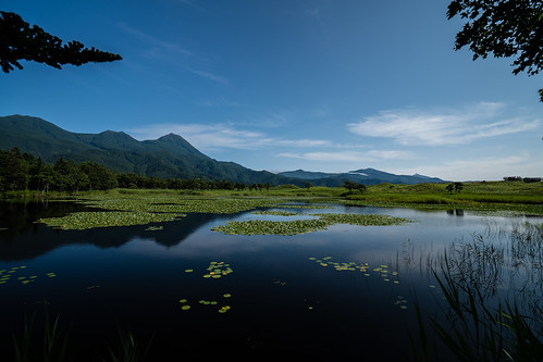 北海道 知床五湖 Hokkaido Shiretoko