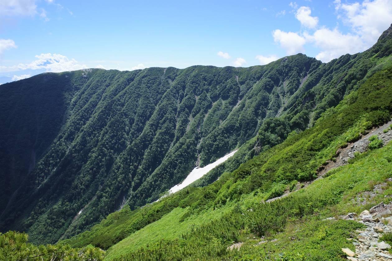 北岳の雪渓と緑