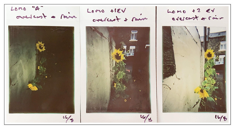 LOMO TEST STRIP