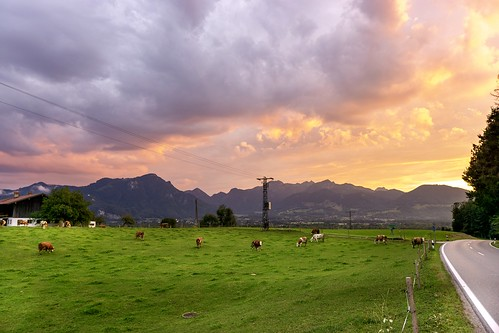 sunset mountains bavaria bayern clouds field cows sun nature sony sigma a6000