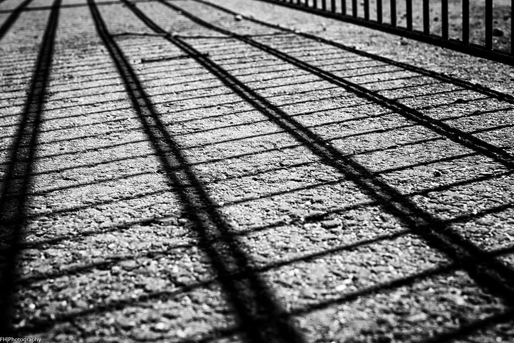 fence.shadow
