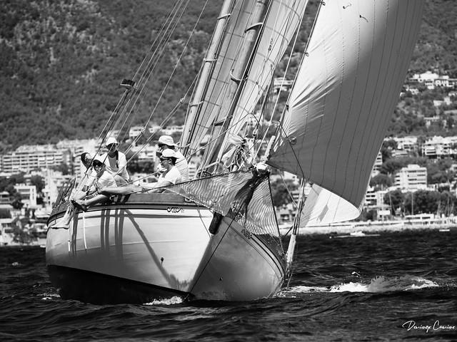 Regatas en la bahía de Palma de Mallorca 48552029797_626bcd5321_z