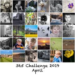 365 - April 2019