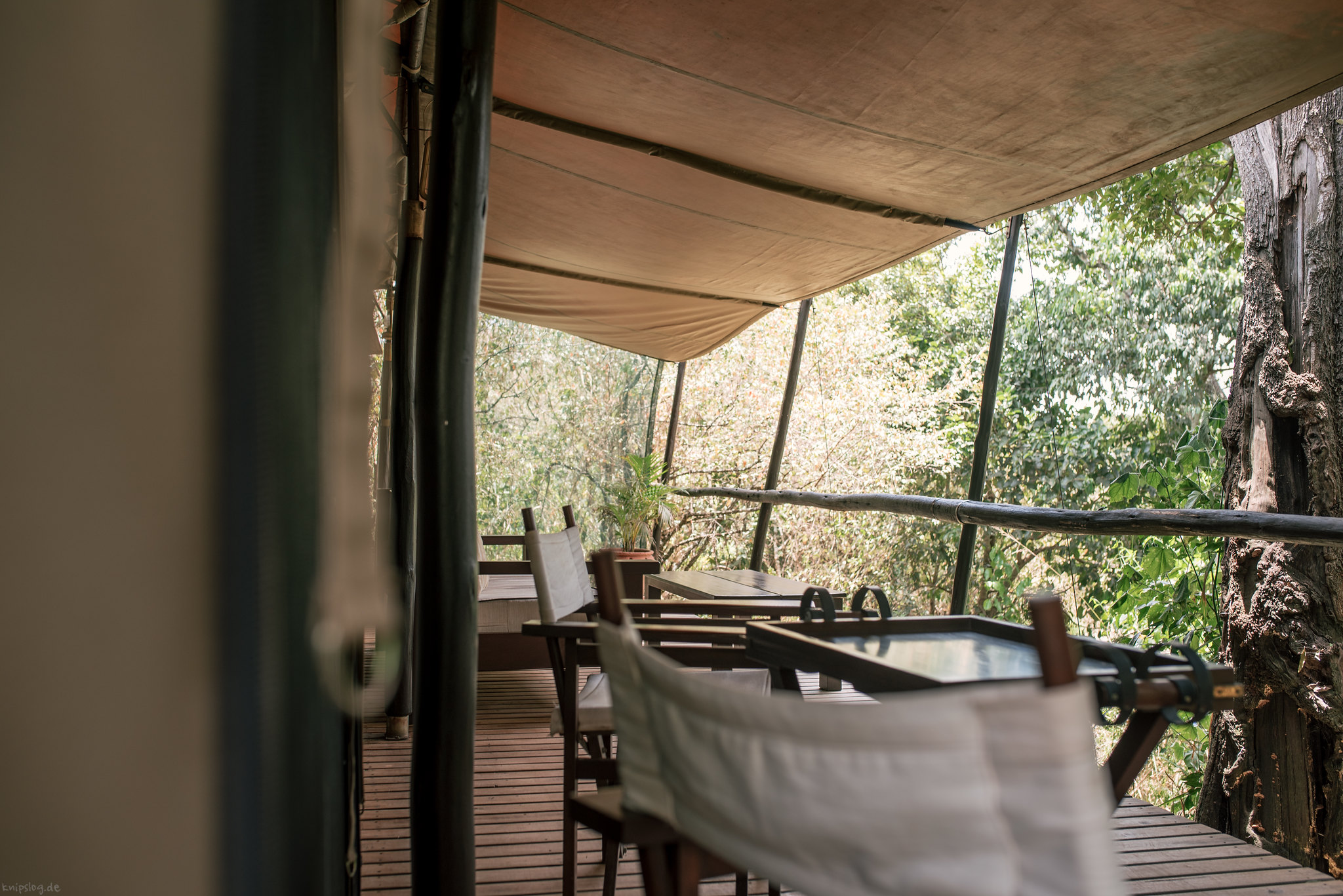 Mara lodge impressions