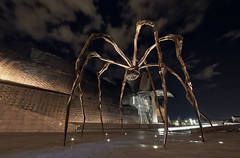 Spider Guggenheim