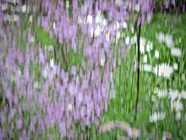 Hommage to Gustav Klimt