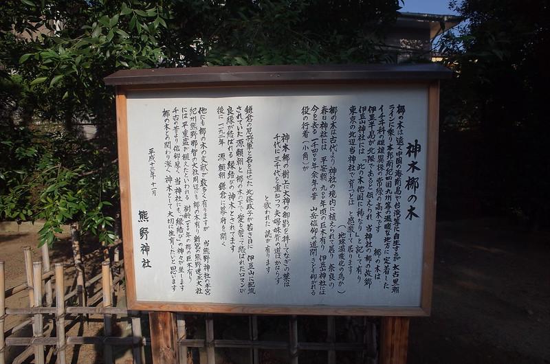 RICOH GRⅡ+ワイドコンバージョンレンズ21mm偽 東京いい道 志茂銀座 志茂熊野神社神木梛の木