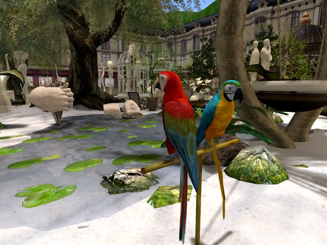 My Surreal World in Plusia Land -Quck Draw Macaws