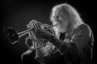 Jazz Middelheim 2019 :: 15-18 augustus, Park Den Brandt