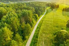 Bikes | Kaunas county aerial #228/365