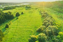 Green Landscape | Kaunas county aerial