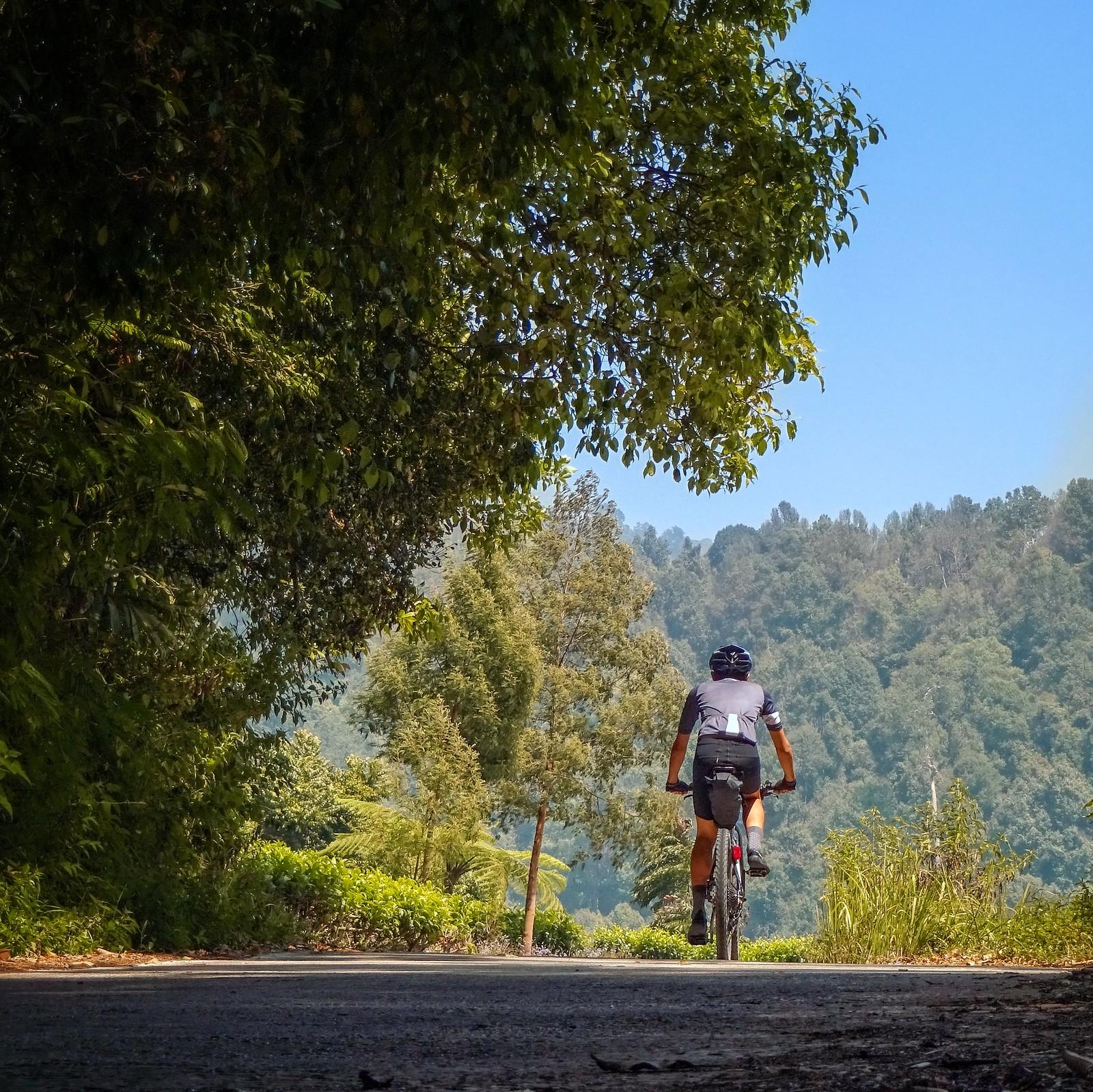 Leuweung Datar - Gambung Cycling Adventure