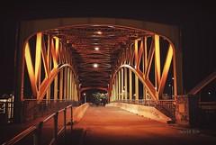Nocturnal Gdansk