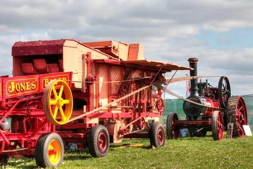 Traction Engine & Threshing Machine