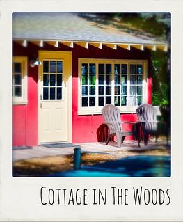 Cottage in The Woods, Glen Arbor, MI, 2019