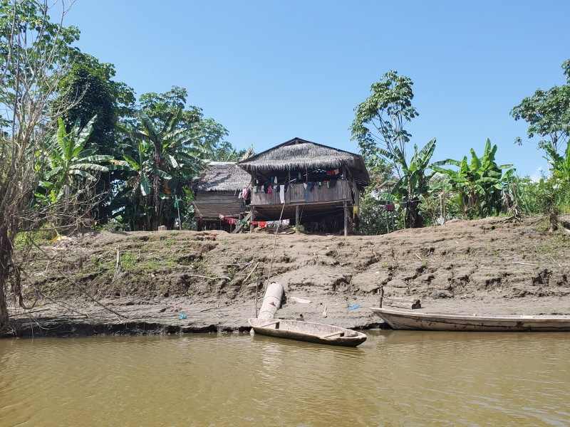 houses in the Amazon