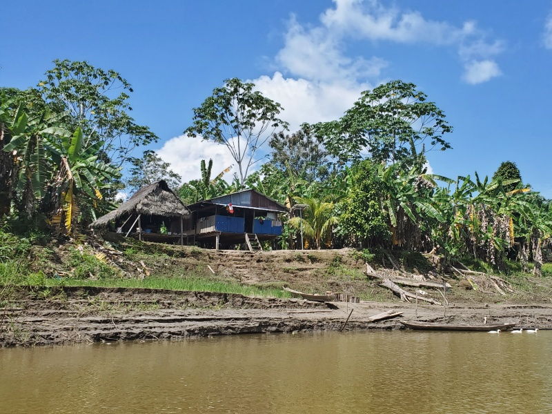 life in the Amazon