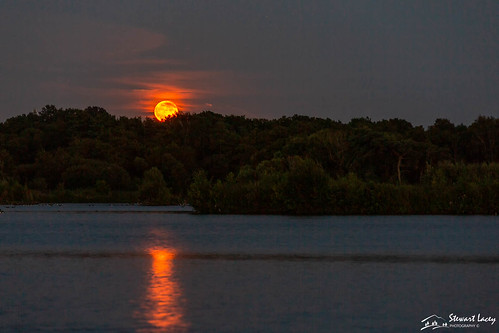 clear trees rising calm fleetpond whispy water hampshire fullmoon moon orange evening uk highcloud