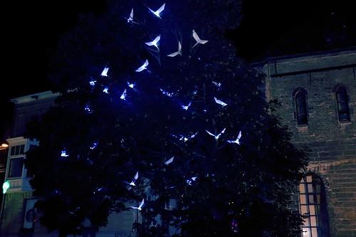 """48559459171 583145ca34 """"Blue Birds"""": arte..."""
