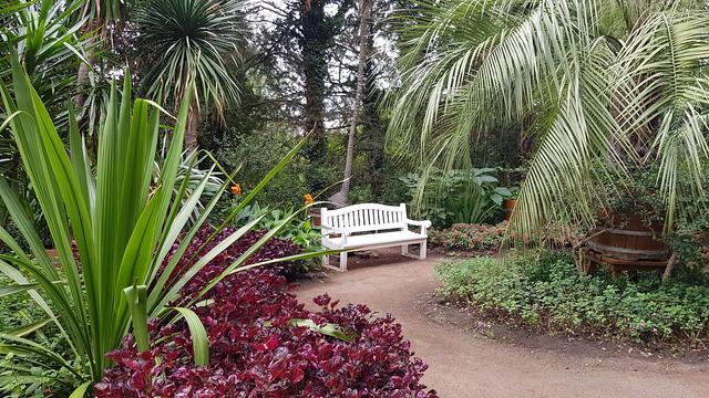 Ein Platz unter Palmen