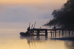 Mist on River Gambia at Sunrise