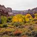Calf Creek-098.jpg