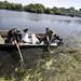Árvíz - Környezetvédelem - Halpusztulás a Zagyván