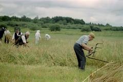 Gang i høstarbejdet.