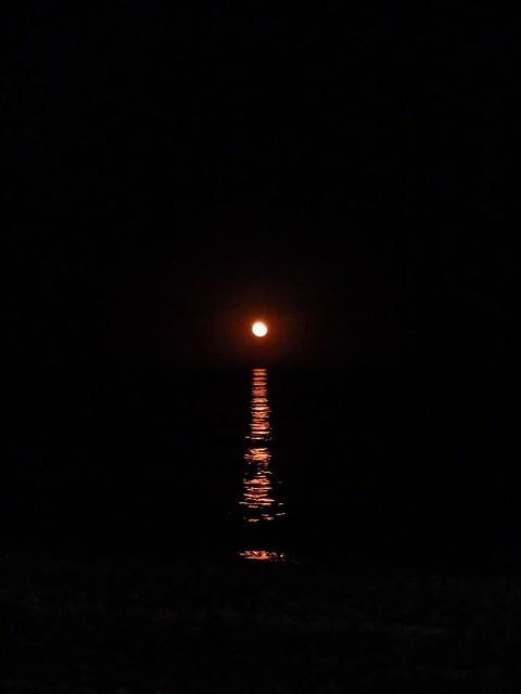 Cuando la luna se baña en el mar....