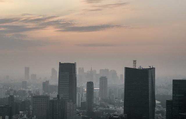 Thin fog twilight