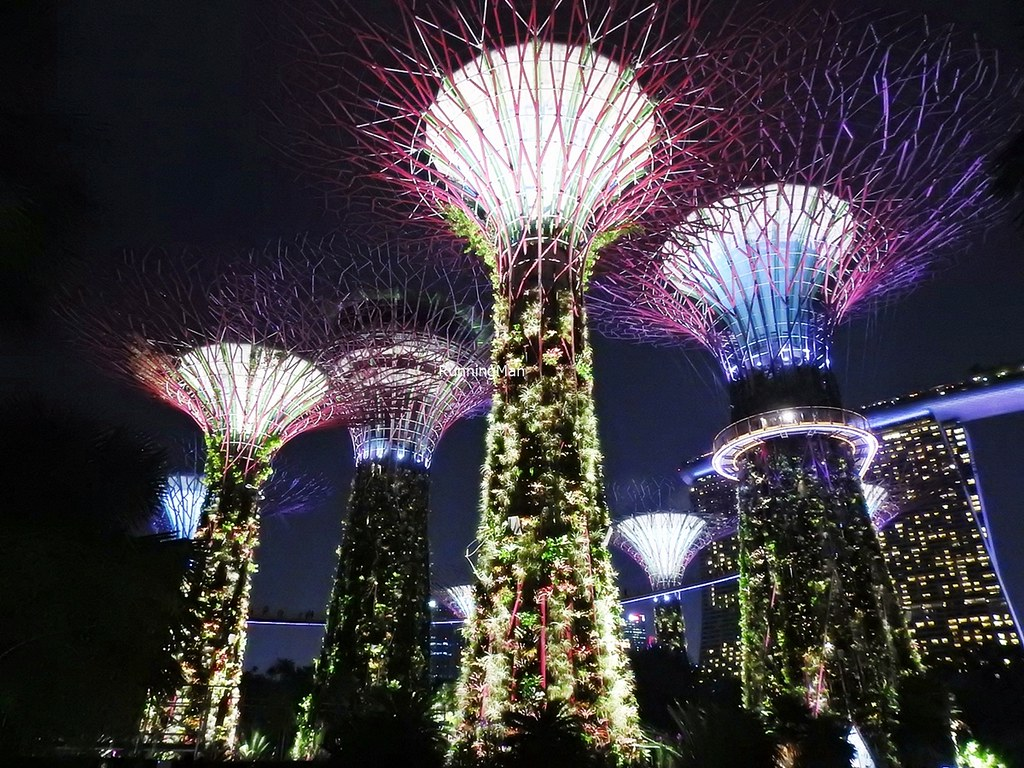 Gardens By The Bay - Supertree Grove By Night