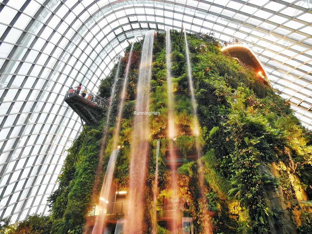 Cloud Forest Dome Waterfall