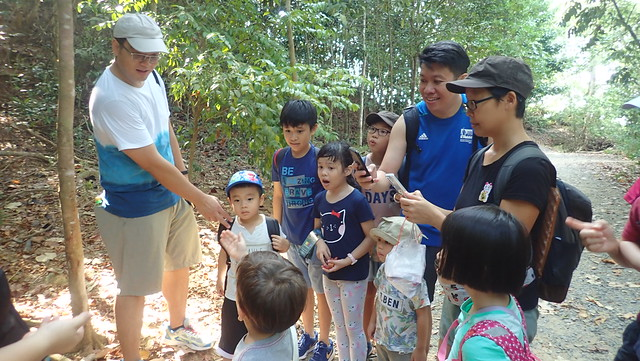 Chek Jawa Boardwalk tour with the Naked Hermit Crabs, Aug 2019