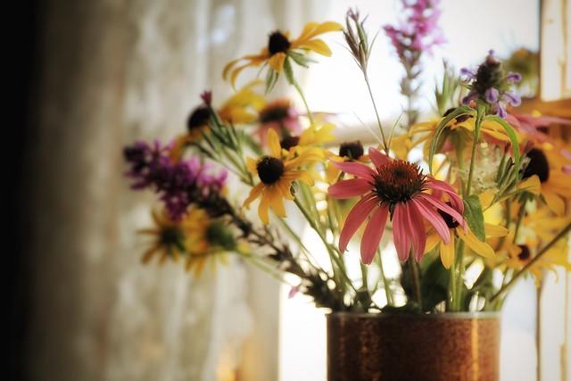 229. Wildflowers.