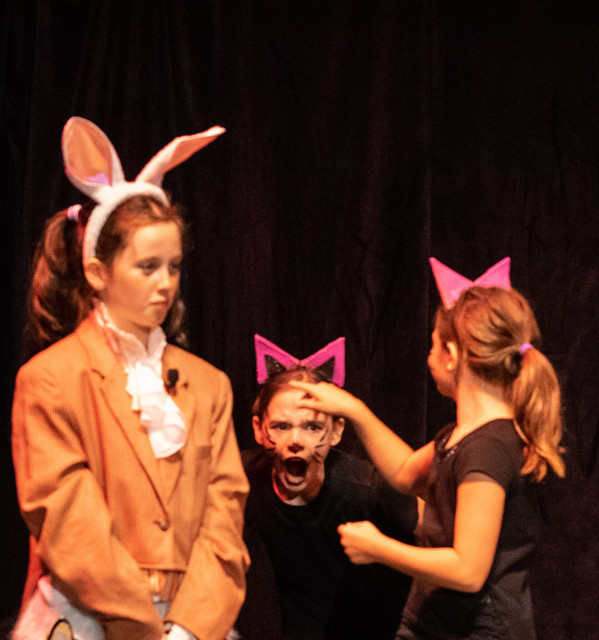 Alice in Wonderland Somerville Musical Theater Program 2019
