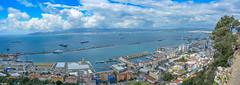 ... Port of Gibraltar ...
