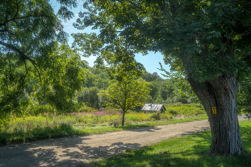 scenic outdoor road trail summer landscape jayhouse katonah shed historic usa