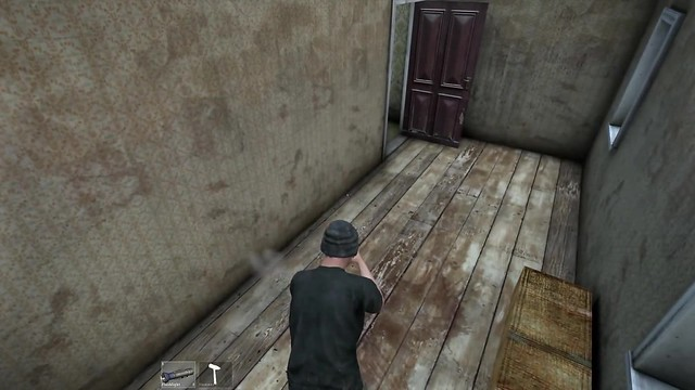 DayZ survival horror zombie video game