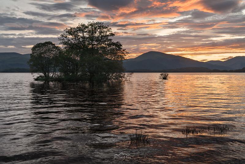 Lochside Blush