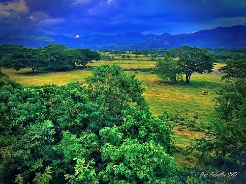 bongabong greenfield