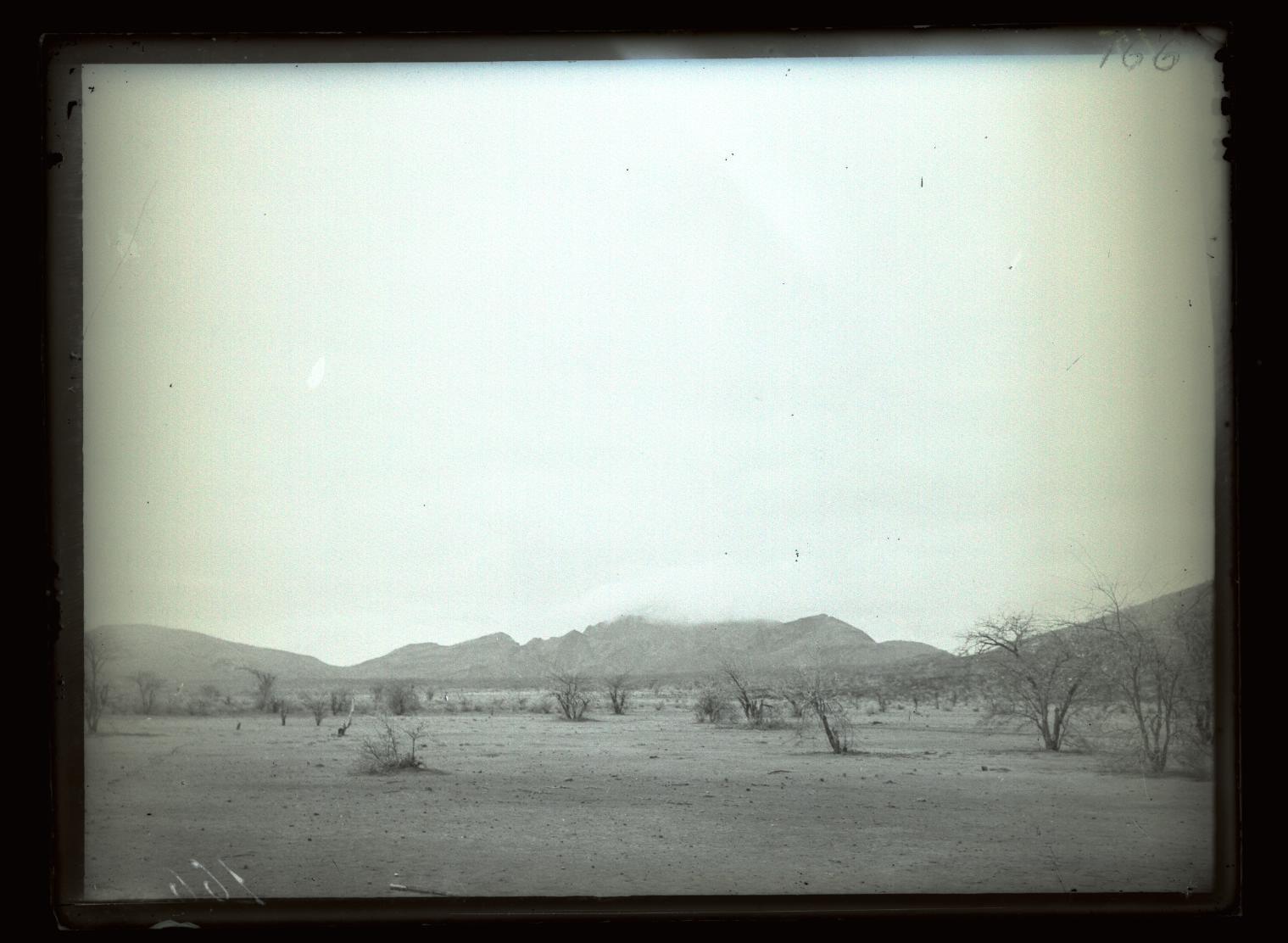 165. В сомалийской пустыне. Буца