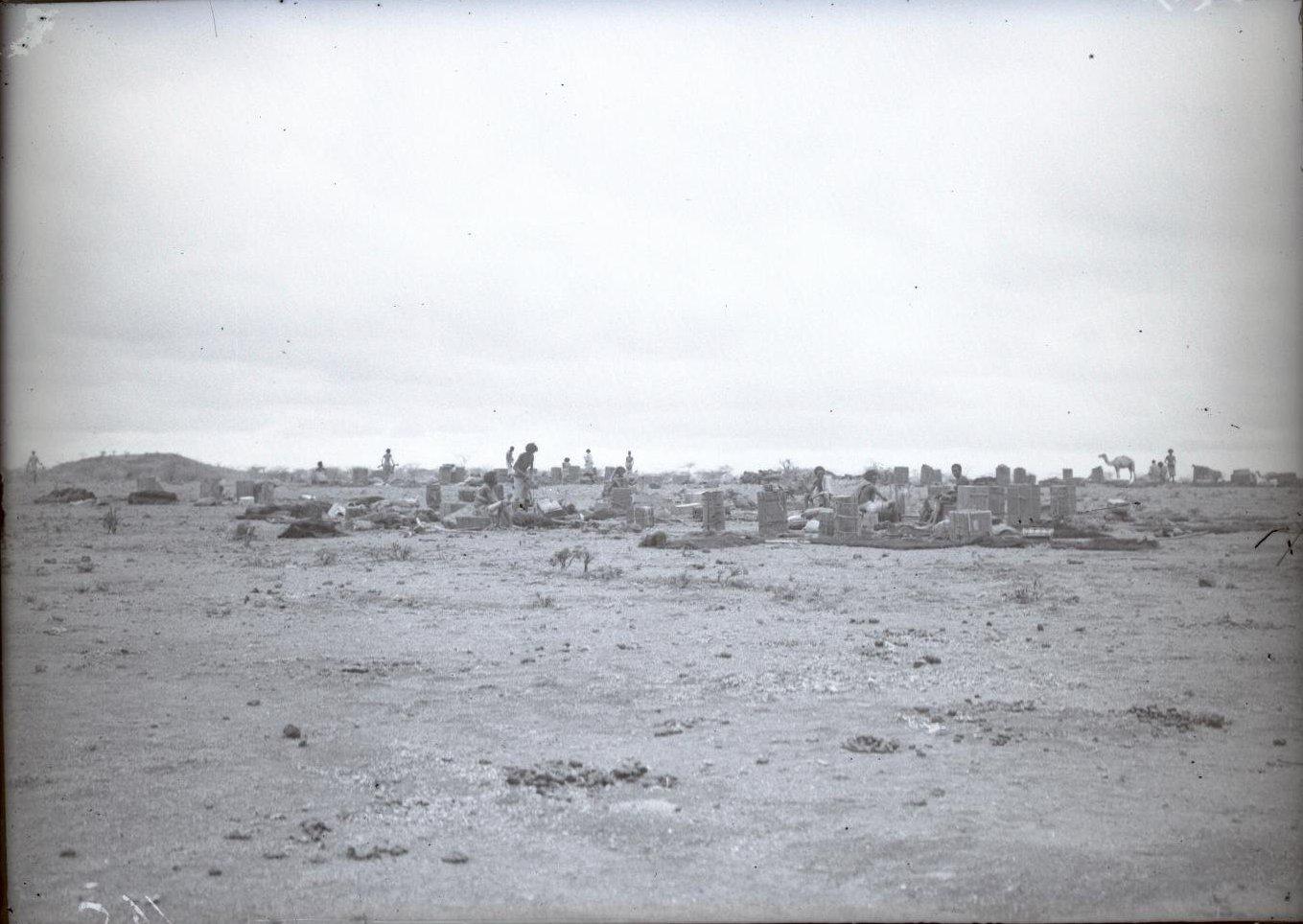 165. В сомалийской пустыне (3)