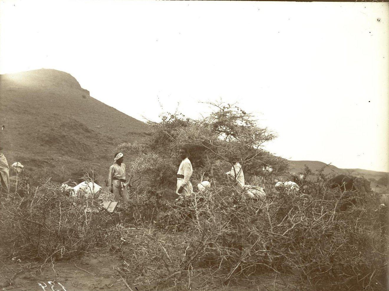 141. В сомалийской пустыне. Мордале. Кухня