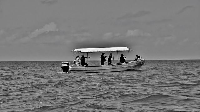 MEXICO, auf Delfinsuche im Golf von Mexico, «Laguna Terminos»,
