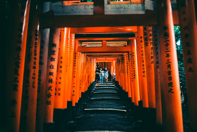 torii gates.