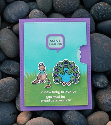 Lawnfawnatics--Shrink Plastic Peacock baby