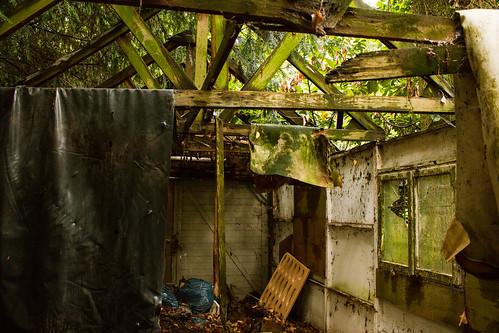 verlassener Schuppen im Wald Innenansicht